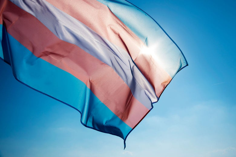 The transgender flag (blue, pink, and white lines) against a sunny blue sky.