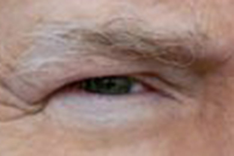 An extreme close-up of the president's eye from his Twitter avatar.