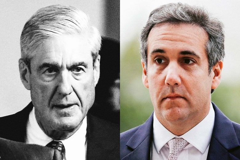 Image result for Mueller and Cohen