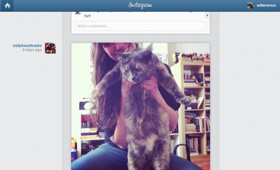 Instagram.com feed screenshot