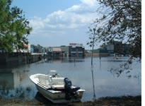 A parking lot-turned-pond. Click on image to enlarge.