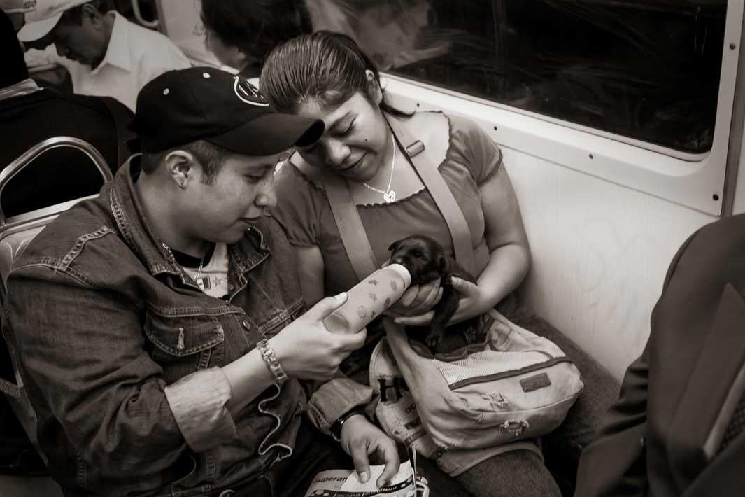 Metro Line 3 near Coyoacan, Mexico City, 2009