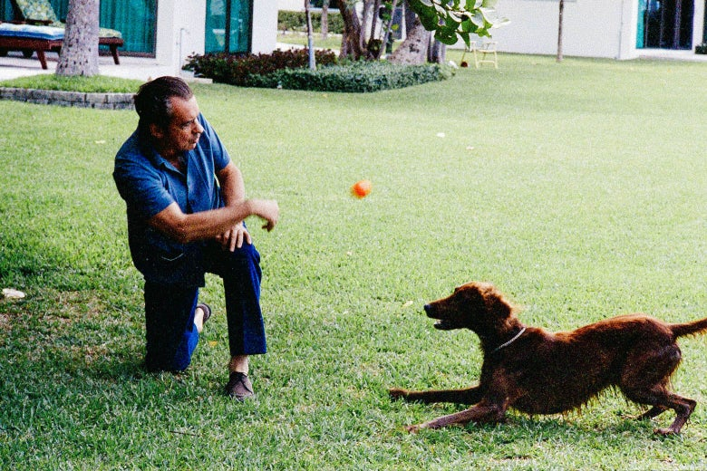 Richard Nixon, in 1970s leisurewear, tosses an orange ball to a dog on a green lawn in Florida.