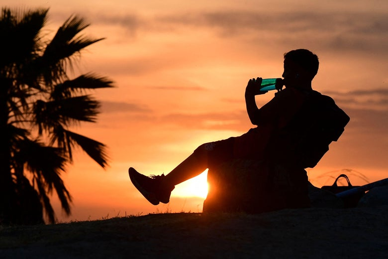 A child drinks from a water bottle while sitting near a palm tree and viewing a sunset.