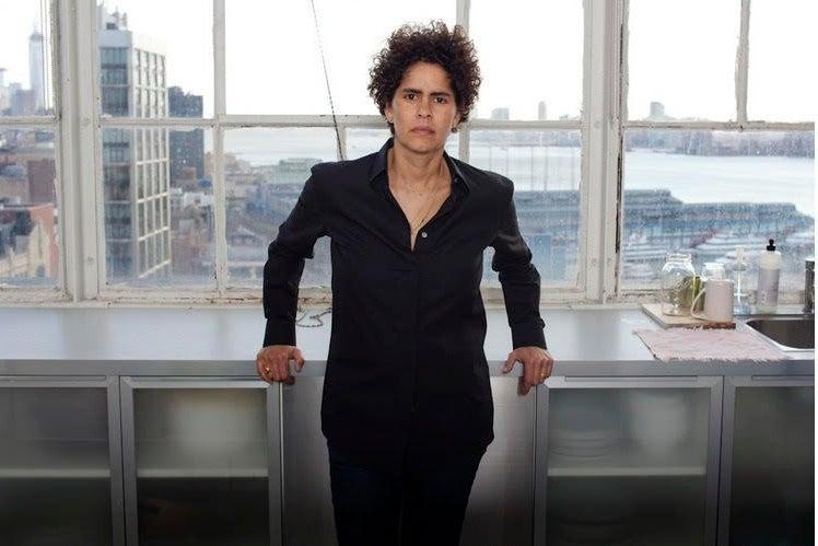Artist Julie Mehretu in front of a window in New York.