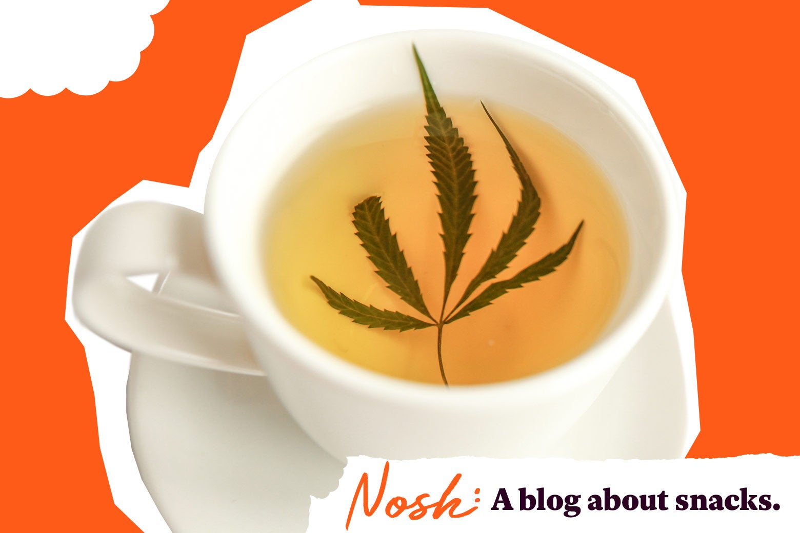 A cup of tea with a marijuana leaf in it.