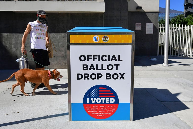 "A man in a mask walks a dog on a leash beside a box that says, ""OFFICIAL BALLOT DROP BOX."""