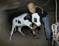 Gaza tunnel. Click image to expand.
