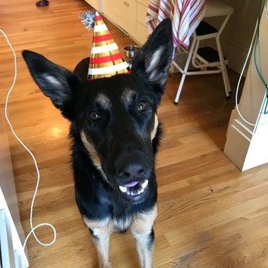 Ruby Greene in a birthday hat.