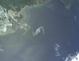 Oil spill from space. Click image to expand.