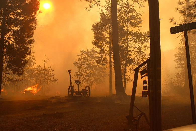 The Camp Fire Closed In Too Fast for These Survivors to Escape. Now, They're Trapped.