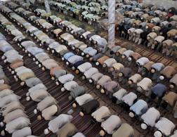 Prayer at Ramadan. Click image to expand.