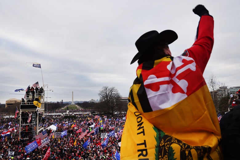 A man wrapped in the Gadsden flag and the Maryland state flag raises his fist as he looks out from the Capitol onto the crowd on the National Mall.
