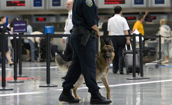 A policeman and a sniffer dog patrol the ticketing area of the International Terminal at the San Francisco International Airport