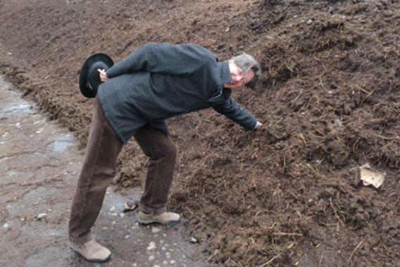 The author reaches his hand into a pile of compost.