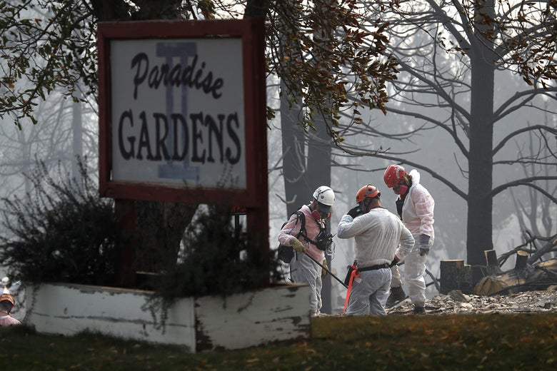 Rescue workers search the Paradise Gardens Apartments for victims of the Camp Fire.