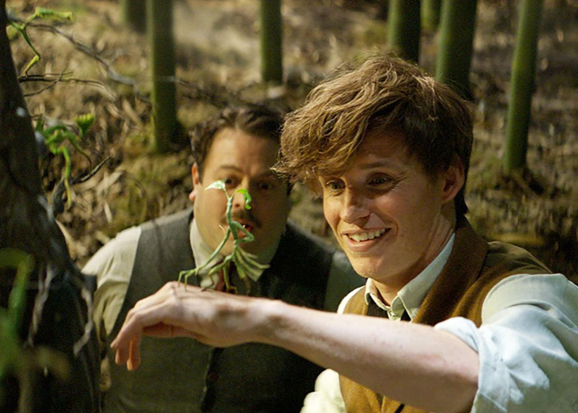 Dan Fogler and Eddie Redmayne in Fantastic Beasts and Where to Find Them.