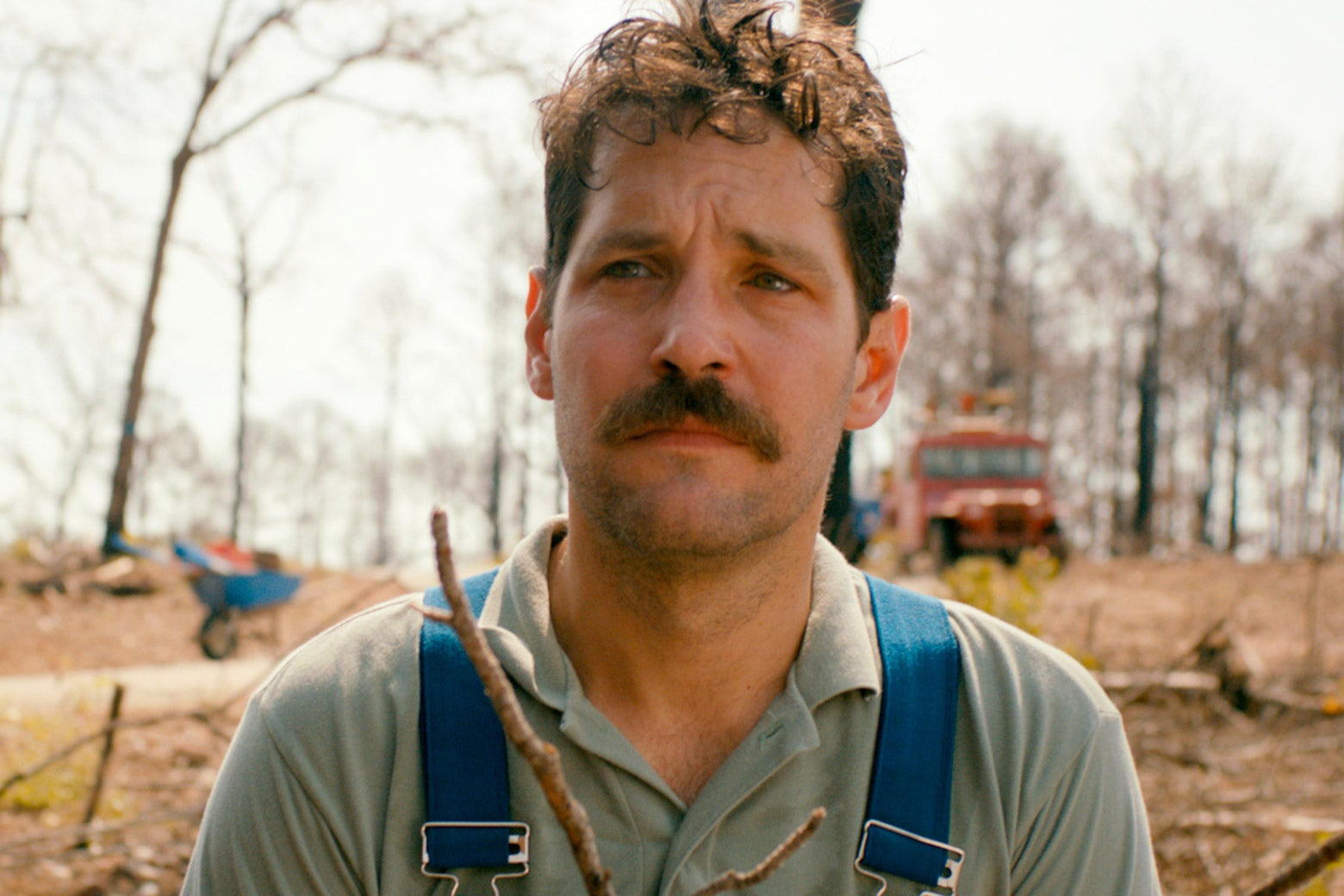 Paul Rudd in Prince Avalanche.