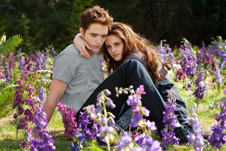 Edward and Bella in a meadow.