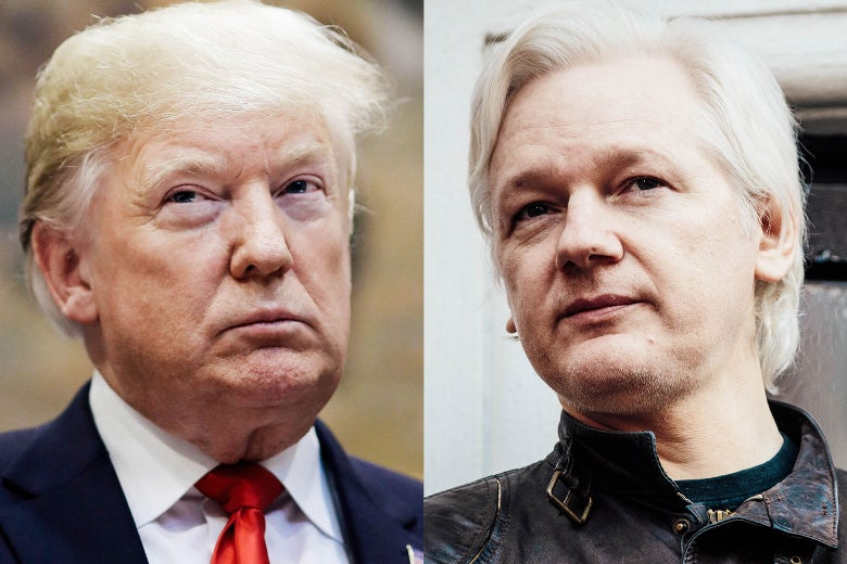 Donald Trump, Julian Assange