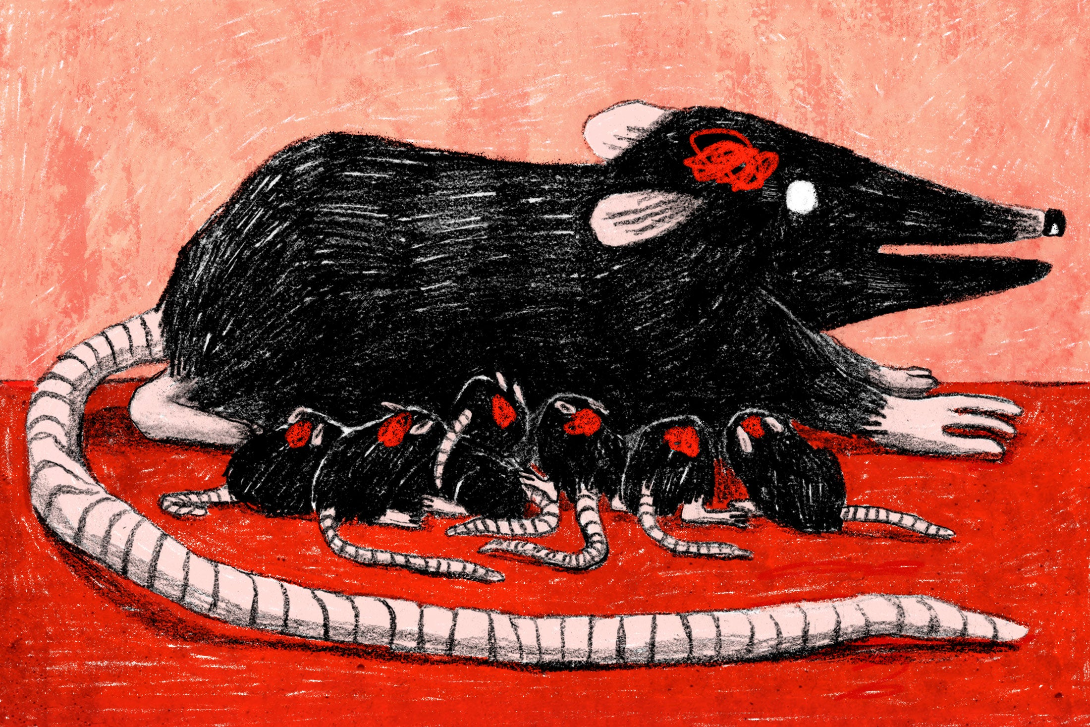 Illustration: Baby rats nurse from their mother, while a squiggle in the approximate location of their brains suggests that knowledge is passed down through their genetic line.