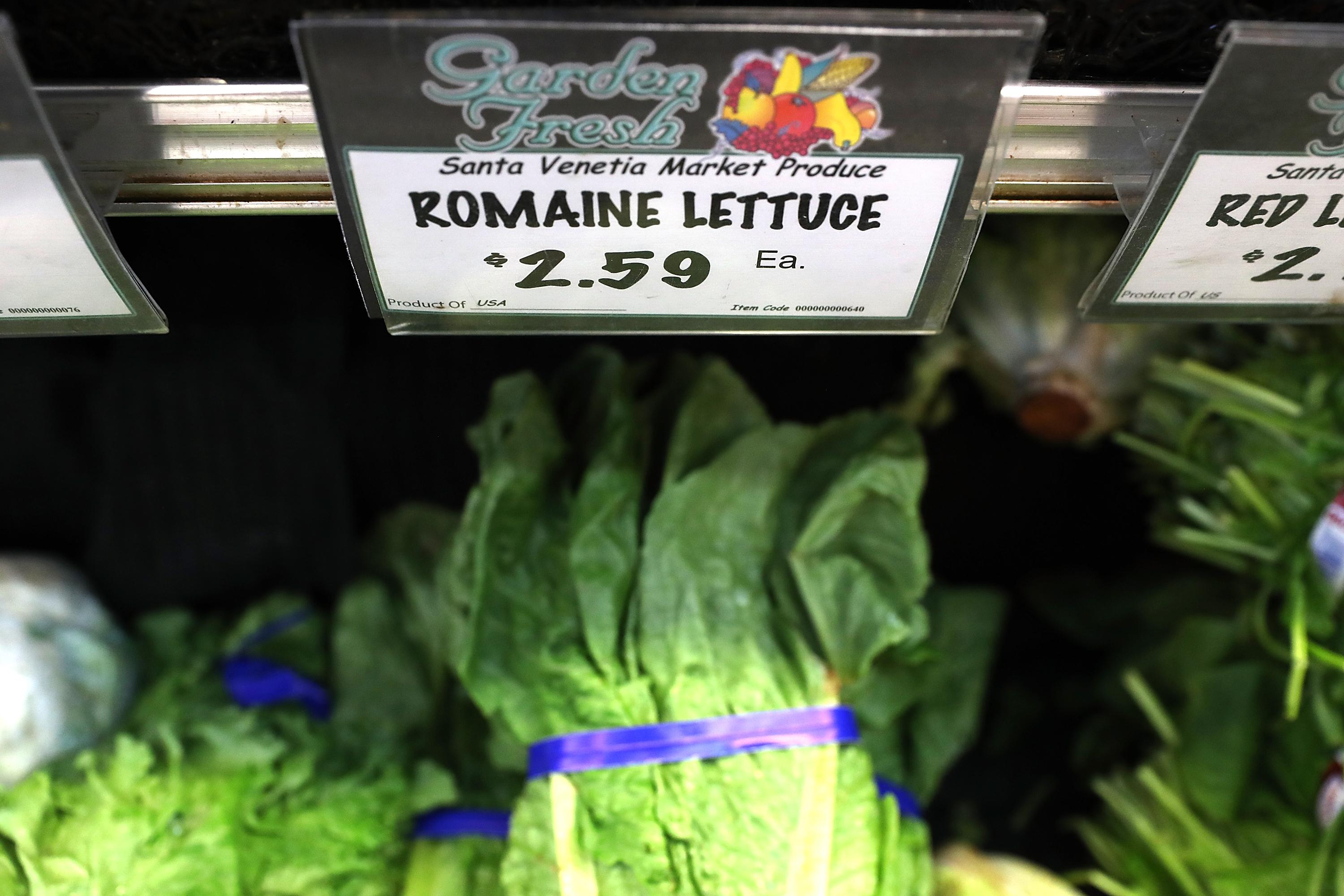 Romaine lettuce is displayed on a shelf at a supermarket.