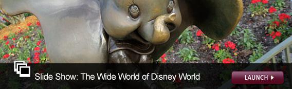 Click here to launch a slide show on the wide world of Disney World.
