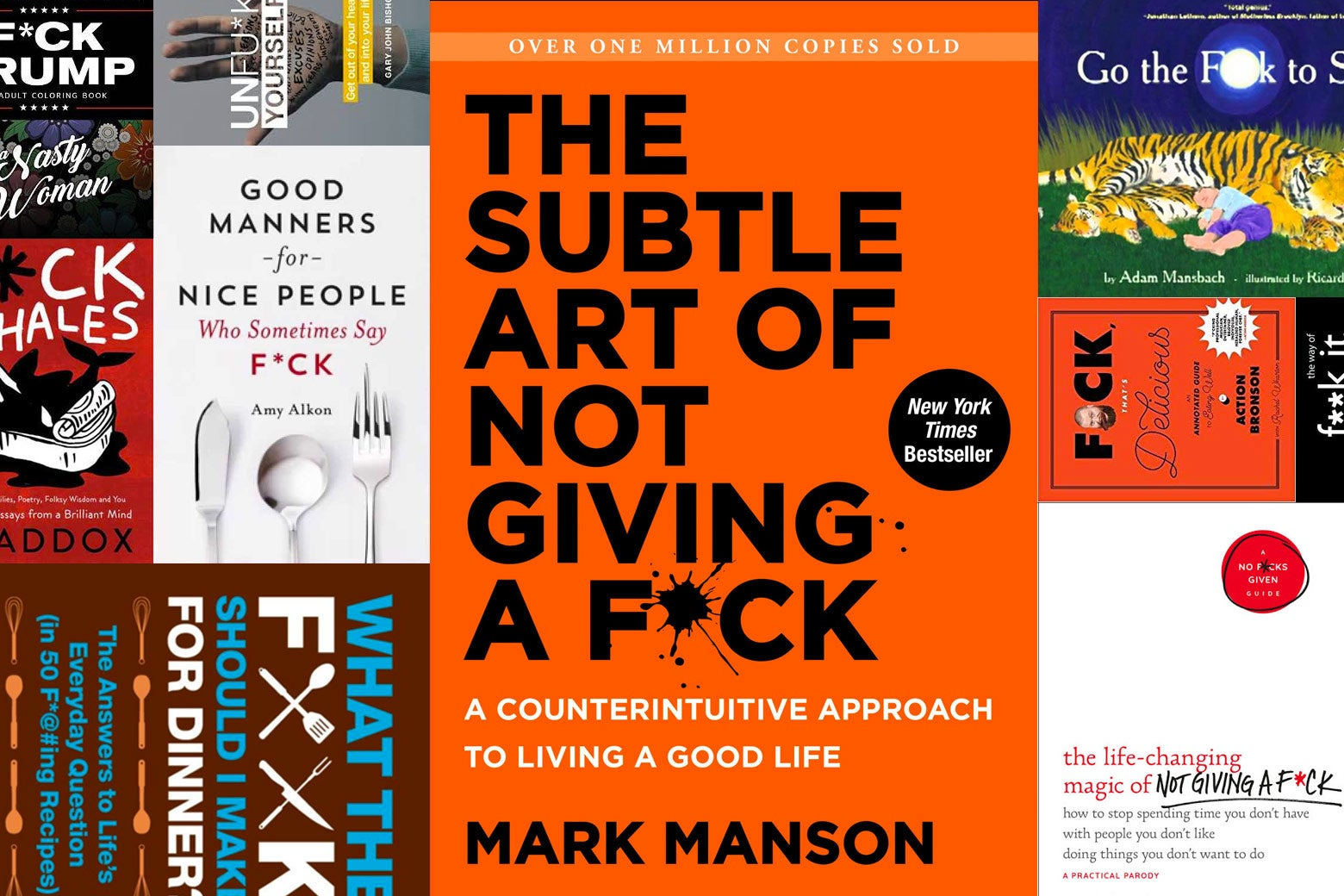 Photo illustration of various books with profanity in the title.