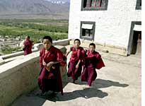 Novice monks at Thiksey were late for school