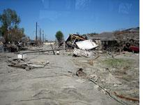 A typical street in the Lower Ninth Ward. Click image to expand.
