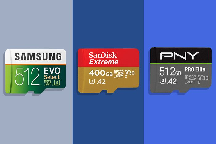 A selection of SD cards