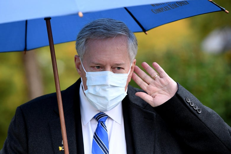 Meadows, standing under an umbrella and wearing a mask, raises his left hand to his left ear