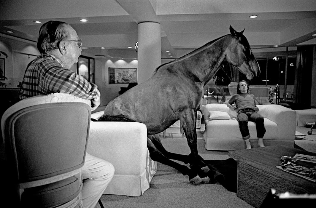 Horse on couch, Hot to Trot, 1988.