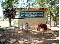 A local school