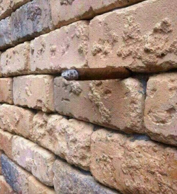 Staring at the wall will reveal an optical illusion