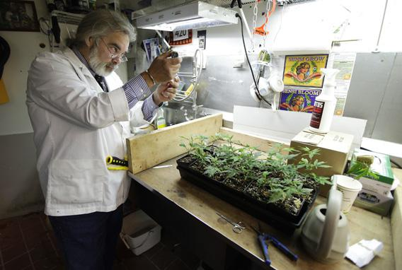 Jake Dimmock, co-owner of the Northwest Patient Resource Center medical marijuana dispensary, works on balancing the pH level of the soil used to grow new medical marijuana plants, Wednesday, Nov. 7, 2012, in Seattle.
