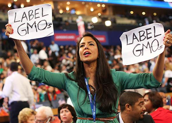 Vani Hari during the Democratic National Convention.