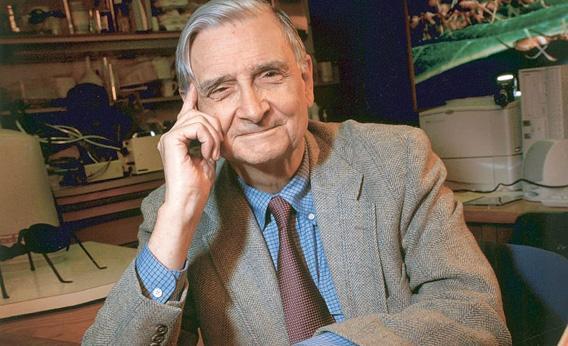 Edward O. Wilson in February 2003.
