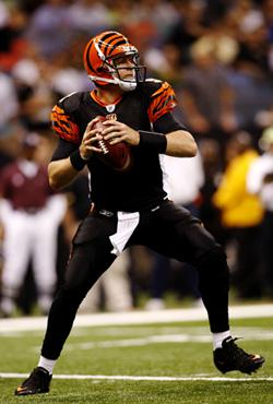 Quarterback Carson Palmer #9 of the Cincinnati Bengals. Click image to expand.