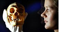 The tiny skull is a huge discovery