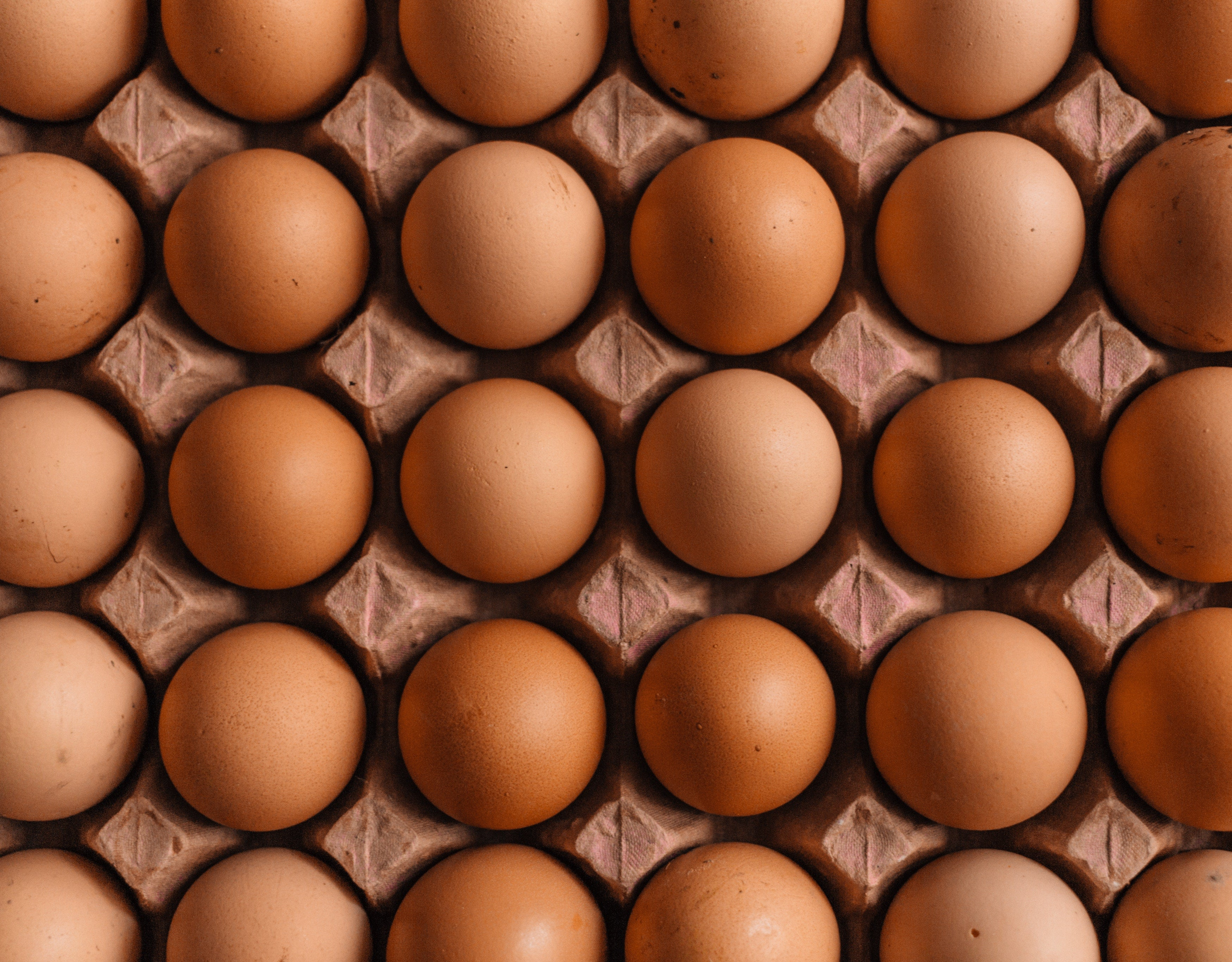 Four rows of brown eggs fill the frame