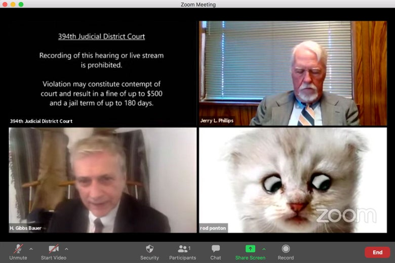 A Zoom screenshot of four videoconference windows, one of which is a notice from the 394th Judicial District Court, two of which have men in them, and the last of which has a kitten with googly eyes.