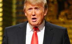 Donald Trump. Click image to expand.