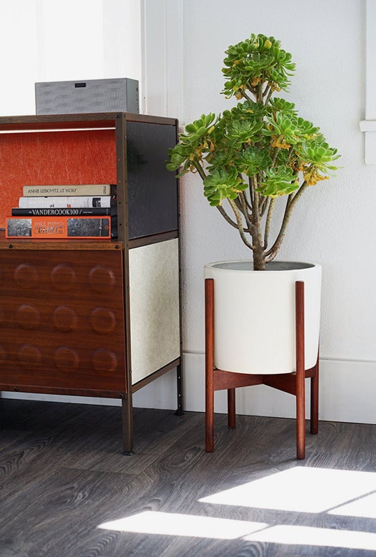Modernica Case Study Ceramic Planter With Wood Stand.