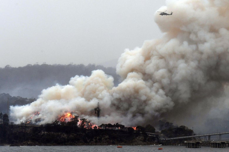 A helicopter is seen flying above a thick cloud of smoke stemming from a large coastal fire.