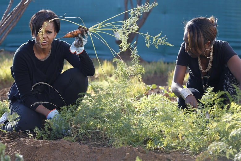 Michelle Obama holds up a carrot she just harvested as she gardens at a community service project at Vhuthilo Community Center in Soweto township, Johannesburg, South Africa on June 22, 2011.