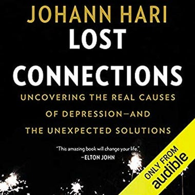 Lost Connections audiobook cover.