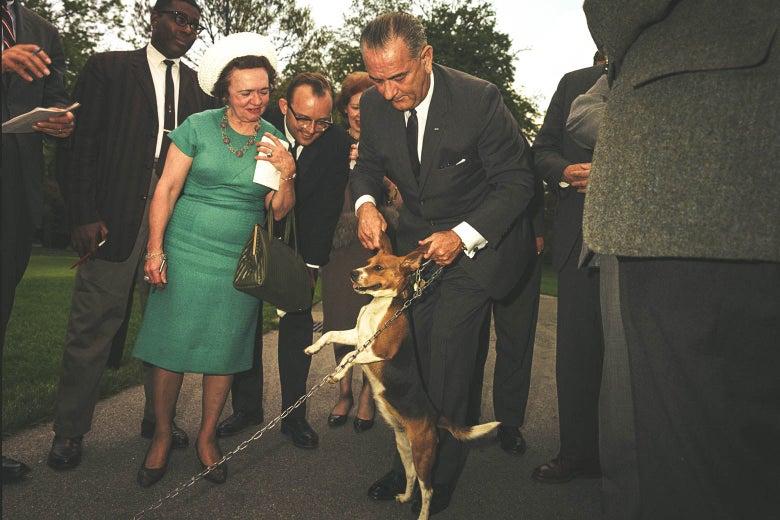 Lyndon Johnson lifting a dog, presumably Her, by the ears.