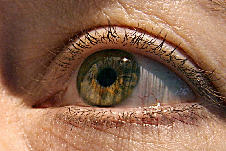 A close photo of a green eyeball with eyelids wide open.