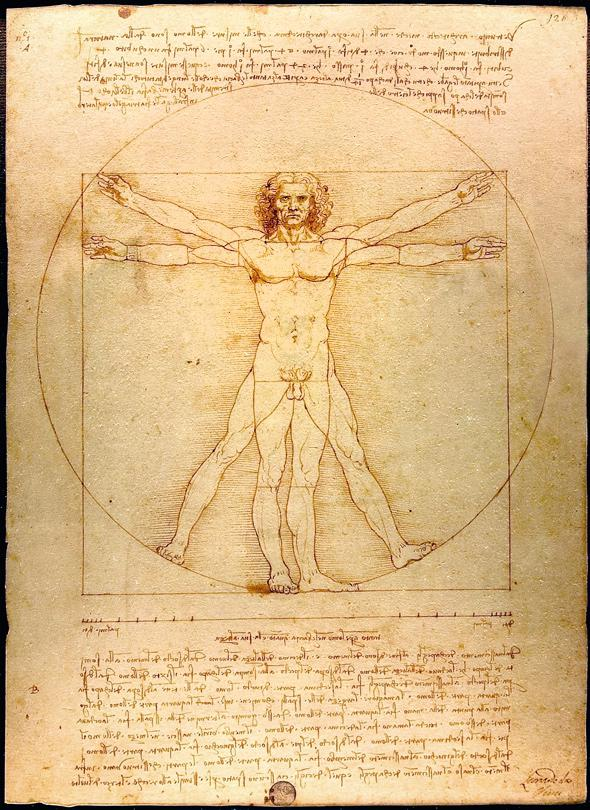 Vitruvian Mans Hernia Leonardo Da Vinci Drawing Shows Flaws Of